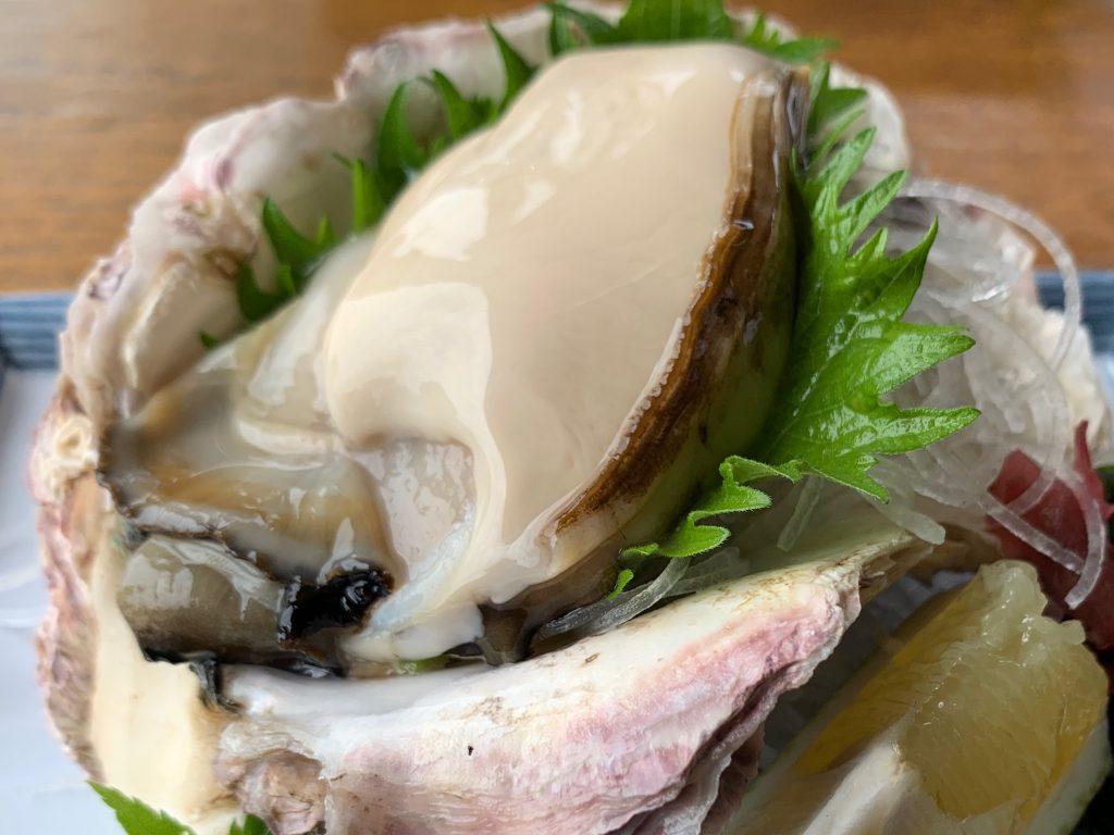 伊根産 極上 岩牡蠣